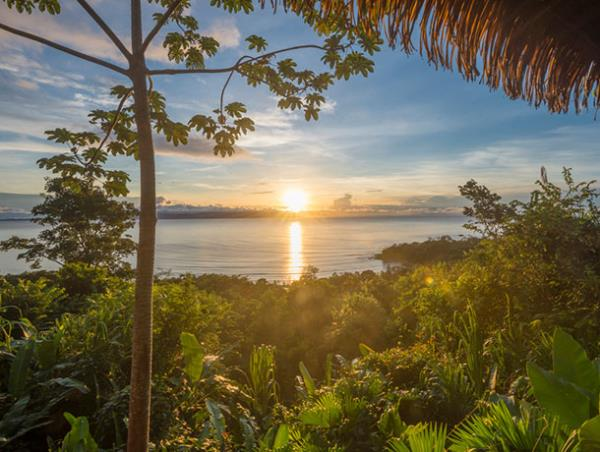 Tailor made Costa Rica wildlife holiday