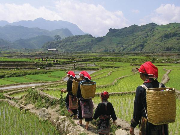 Vietnamese hill tribes tour