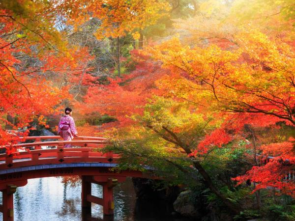 Japan luxury honeymoon, 14 days