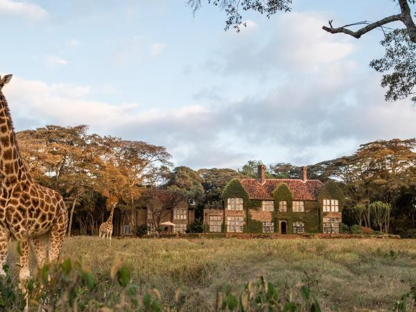 Giraffe Manor and wildlife safari in Kenya
