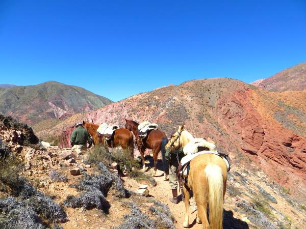 Argentina horseriding holiday in Province of Salta and Jujuy