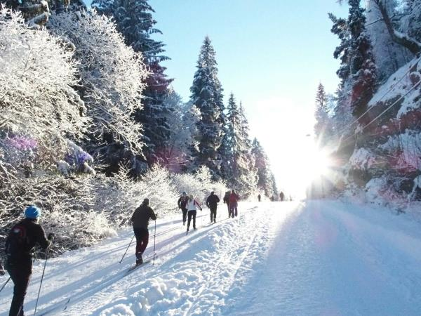 Norway cross-country ski tour