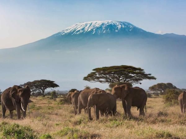 Tanzania holiday, Kilimanjaro trek, safari & beach