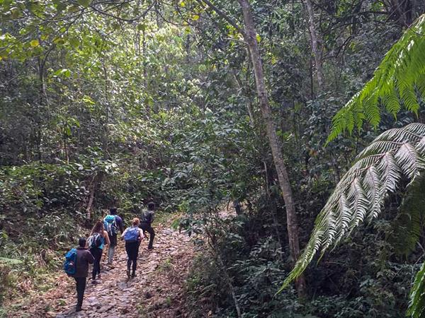 Western Ghats walking tour in India
