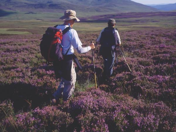 Walking holidays in Cairngorms