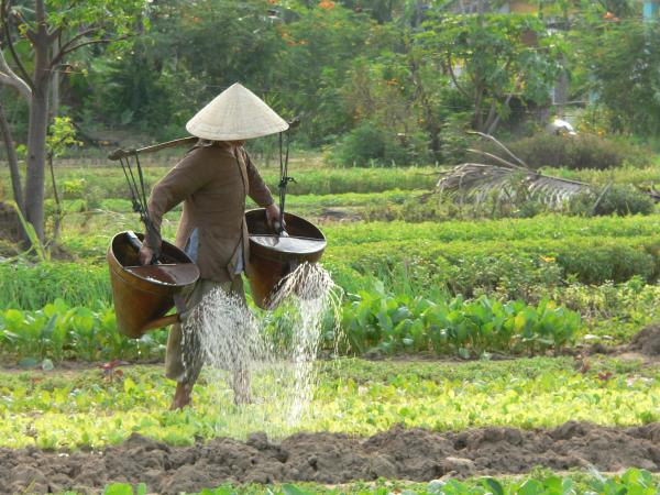 Vietnam small group tour, hidden Vietnam