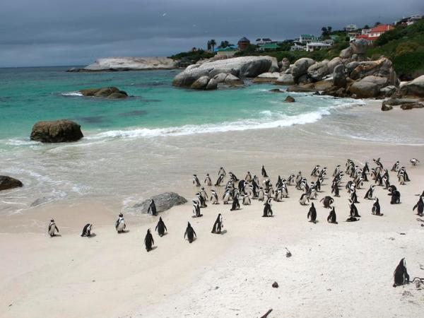 Wheelchair accessible South Africa self drive holiday