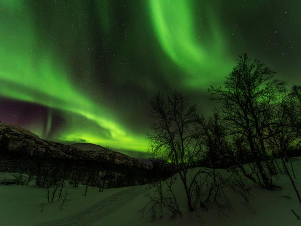 Norway Northern Lights photography tour