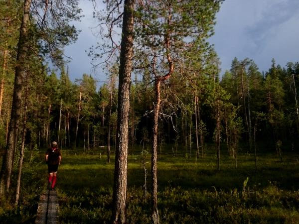 Trail running holiday in Finland
