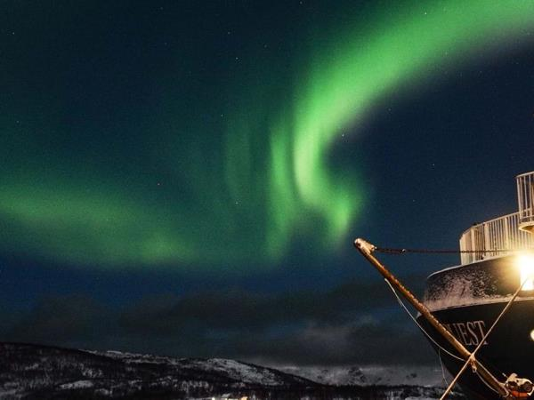North Norway cruise, Aurora Boreali, whales & ice hotel