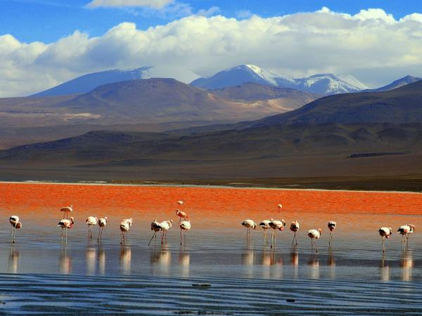 Bolivia small group tour, Hidden Bolivia