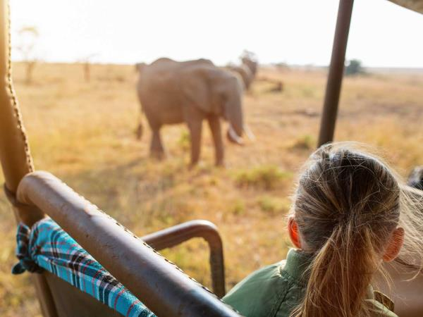 Family safaris in Kenya & Tanzania