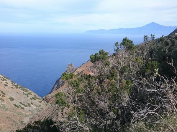 La Gomera painting holiday in Canary Islands