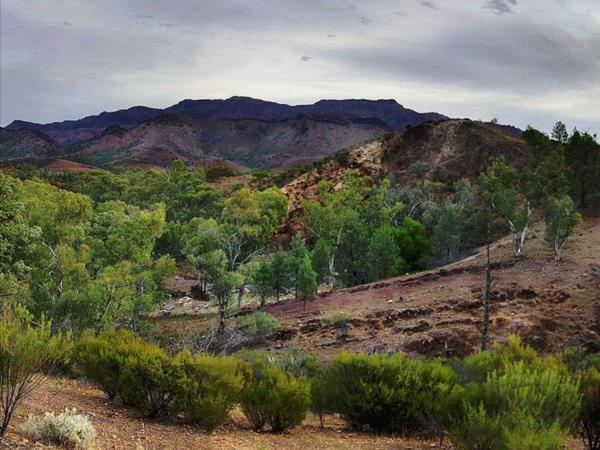 Flinders Ranges self guided walking holiday, Australia