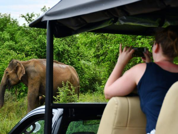 Sri Lanka wildlife watching tour