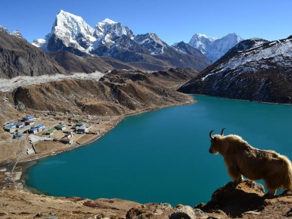 Gokyo Ri Valley trek in Nepal