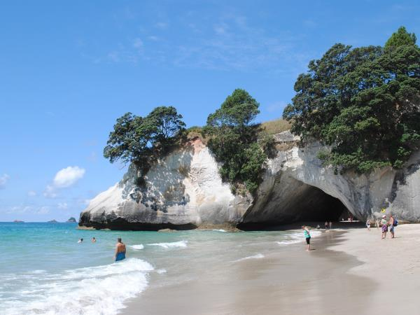 New Zealand tours, North Island