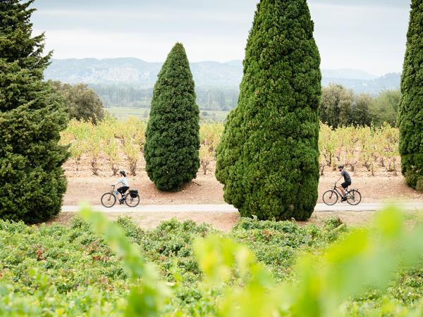 E-bike cycling holiday in Provence