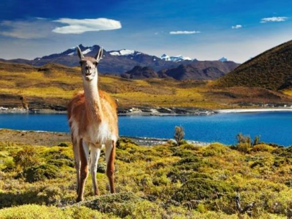 Best of Patagonia tailor made adventure holiday