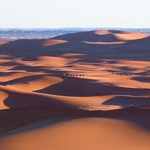 Things to see & do in the Sahara Desert
