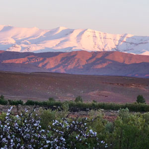Walking in the High Atlas
