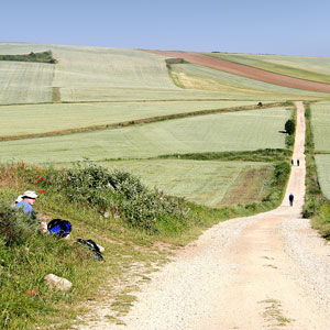 Camino de Santiago travel guide