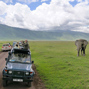 Best time to go on a safari in Tanzania