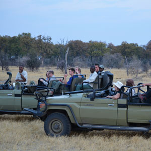 Wheelchair accessible safaris
