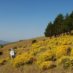 Walking holidays in the Alpujarras