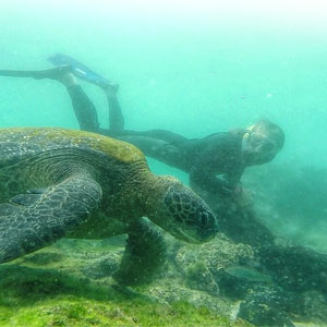 Galapagos multi activity holidays travel guide
