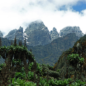 Things to see & do in the Rwenzori Mountains