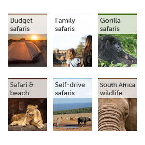 All our safari guides