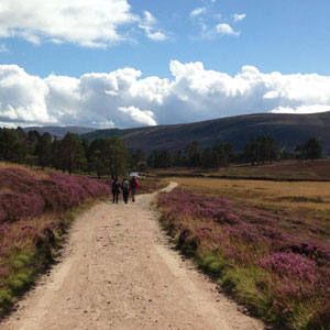 Things to see & do in the Cairngorms