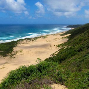 Safari & beach holidays in Kwazulu-Natal