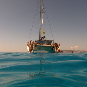 Dolphin watching holidays in Greece