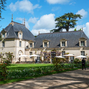 Why are there so many Chateaux in the Loire Valley