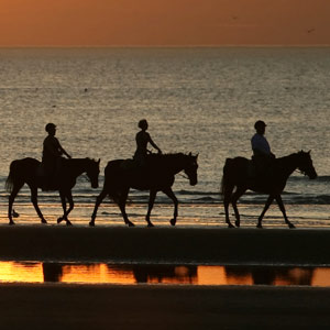 Horse riding travel guide