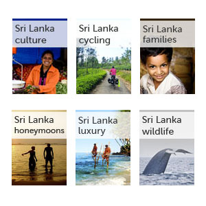 All our Sri Lanka guides