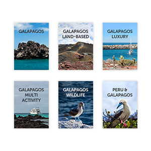 All our Galapagos guides
