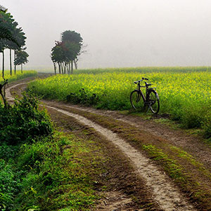 India cycling holidays guide