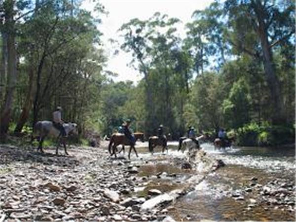 Snowy river horse riding trip in Victoria, Australia