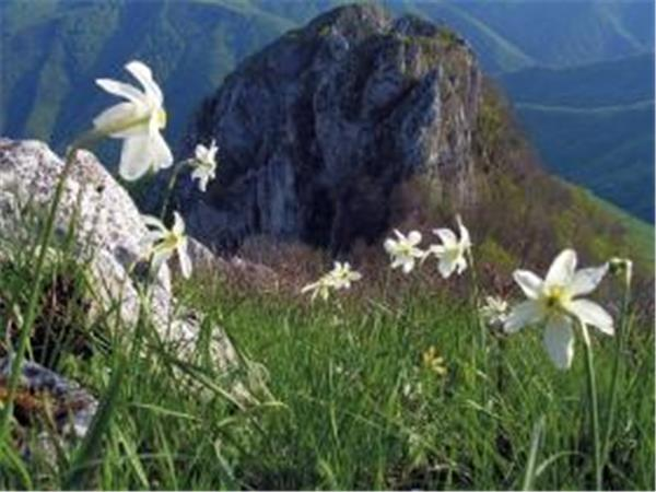 Romania walking holidays