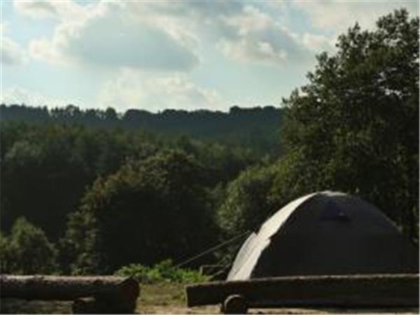 Beech Estate woodland campsite in Sussex