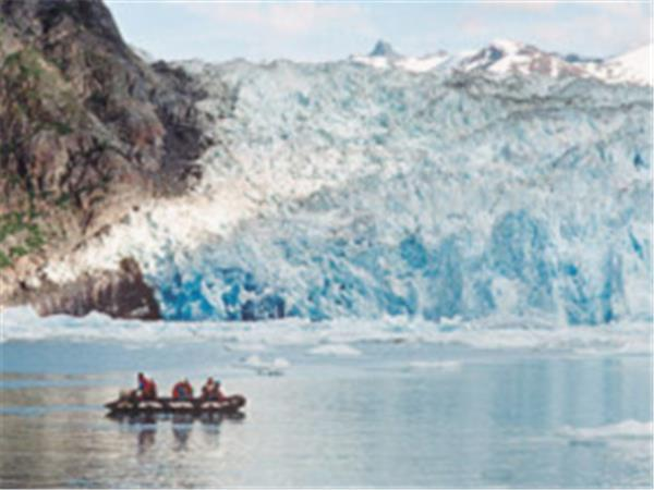 Alaska wildlife cruise