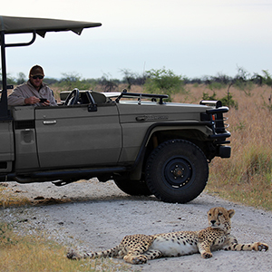 Safari with electric vehicles
