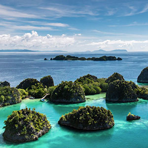 Snorkel safaris in Raja Ampat