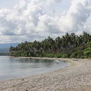 Things to see & do in the Solomon Islands