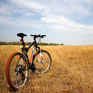 Types of cycling holidays in India