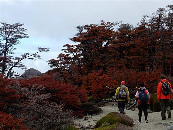 Patagonia trekking holiday, Fitzroy and Paine