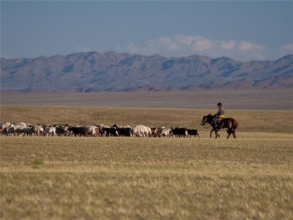 Mongolia adventure holiday, small group